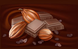 Chocolate and cacao pods Stock Photos