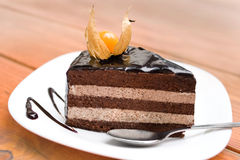 Chocolate cake. This chocolate cake decorated with Physalis Stock Photo