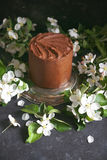 Chocolate cake with apple trees flowers on a dark background, Selective focus Royalty Free Stock Photos