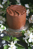 Chocolate cake with apple trees flowers on a dark background, Selective focus Royalty Free Stock Image