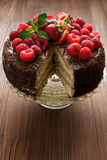 Chocolate cake with berries Stock Images