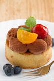 A chocolate cake with berries and fruts Royalty Free Stock Image