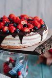 Chocolate cake with berries and mint on the stand stock photography