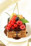 Chocolate cake with berries (raspberry, currant, cherry). And chocolate sauce Stock Photos