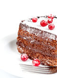 Chocolate cake with berry Stock Photography