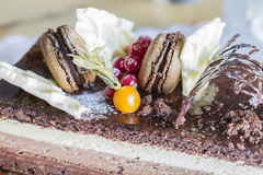 Chocolate cake with biscuits and berries Stock Photos