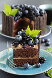 Chocolate cake with blueberry Royalty Free Stock Images