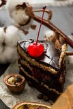 Chocolate cake with a bright cherry. Still life with walnut, coffee grains and a sprig of cotton royalty free stock photos