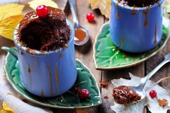Chocolate cake brownie cooked in a cup in the microwave for 2 minutes. Rustic style. Selective focus. Stock Photos