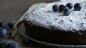 Chocolate cake brownie generously covered with powdered sugar stylishly lying next to the blue berries. Chocolate cake brownie generously covered with powdered stock footage