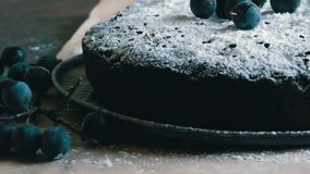 Chocolate cake brownie generously covered with powdered sugar stylishly lying next to the blue berries. Chocolate cake brownie generously covered with powdered stock video footage