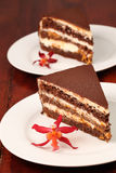Chocolate cake with cheese and apricot jam Stock Photo