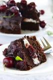 Chocolate cake with cherries Stock Photo