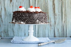 Chocolate cake with cherries and whipped cream Royalty Free Stock Photography