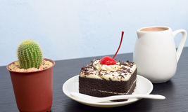 Chocolate cake with cherry and milk jug, cactus. On black wooden table Stock Images