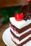 Chocolate cake with cherry on top Royalty Free Stock Images