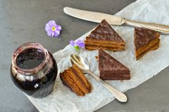 Chocolate  cake. Chocolate cake  and blueberry jam with purple flowers Royalty Free Stock Photography
