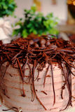 Chocolate cake with chocolate eggs on top, with green plants in. The background in bakery Stock Images
