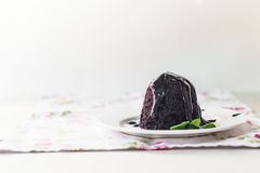 Chocolate cake with chocolate syrup with mint leaves on a white Royalty Free Stock Images