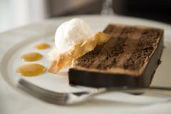 Chocolate Cake and Coconut Ice Cream Stock Photography