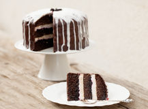 Chocolate cake with coconut icing Stock Photography