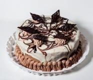 Chocolate Cake with cream Royalty Free Stock Photo