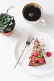 Chocolate cake, cup of coffee and succulent on white table Stock Photography