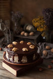 Chocolate cake dark food mystery composition with book and walnuts Stock Image