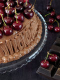Chocolate cake decorated with cherries Stock Images