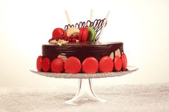 Chocolate cake decorated with macaroons Stock Photography