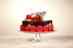 Chocolate cake decorated with macaroons Royalty Free Stock Photo