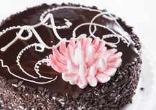 Chocolate cake with decorative flower Stock Images