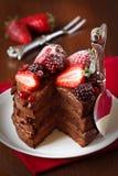 Chocolate cake. Royalty Free Stock Image