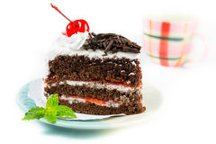 Chocolate cake delicious decorated with whipped cream and cherri Stock Image