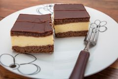 Chocolate cake filled with vanilla pudding. On plate Stock Images