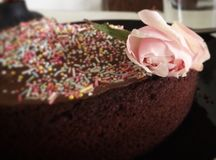 Chocolate cake and flower. A welcome home chocolate cake royalty free stock photo