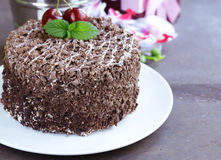 Chocolate cake with fresh cherries (Black Forest) Stock Images