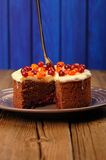 Chocolate cake with fresh cranberries, sea-buckthorn and icing o Stock Images
