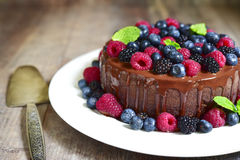 Chocolate cake with fresh forest berries. Royalty Free Stock Photography