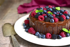 Chocolate cake with fresh forest berries. Royalty Free Stock Photo