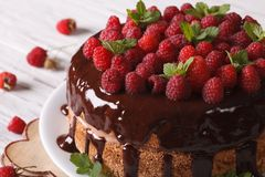 Chocolate cake with fresh raspberries close-up horizontal. Chocolate cake with fresh raspberries close-up on a plate. Horizontal Royalty Free Stock Photography