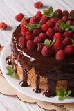Chocolate cake with fresh raspberries close-up vertical. Chocolate cake with fresh raspberries close-up on a plate. vertical Stock Photography