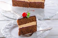 Chocolate cake. A fresh and tasty chocolate cake Royalty Free Stock Photos