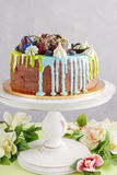 Chocolate cake with fruit and blue glaze Royalty Free Stock Image
