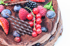 Chocolate cake with fruits Royalty Free Stock Photo