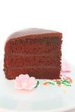 Chocolate cake with fudge sauce. Stock Photos