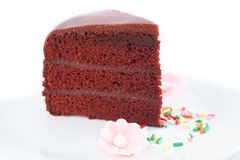 Chocolate cake with fudge sauce. Stock Images