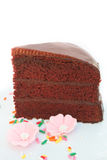 Chocolate cake with fudge sauce. Royalty Free Stock Images