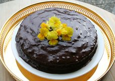 Chocolate cake with ganache Royalty Free Stock Photography