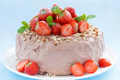 Chocolate cake garnished with fresh strawberries Stock Images